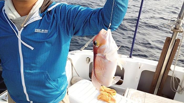 catch55