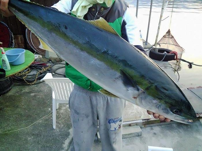 fisherman25