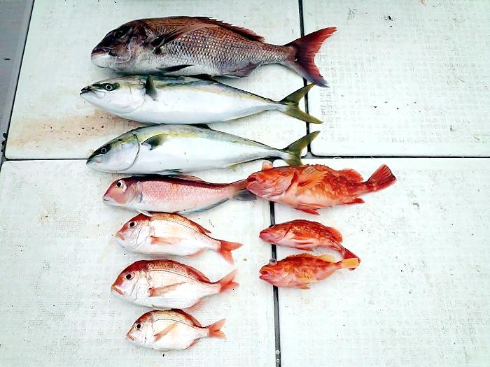 catch73